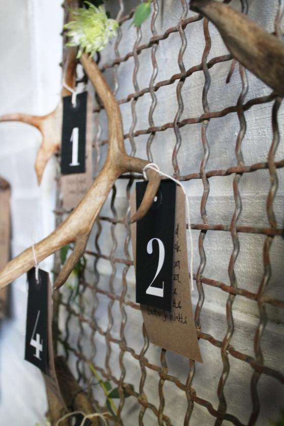 Antlers 1