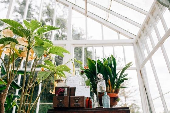 Botanical Shoot LMD-1030