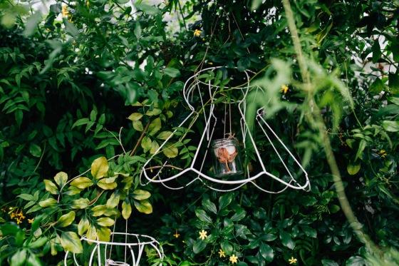 Botanical Shoot LMD-1141