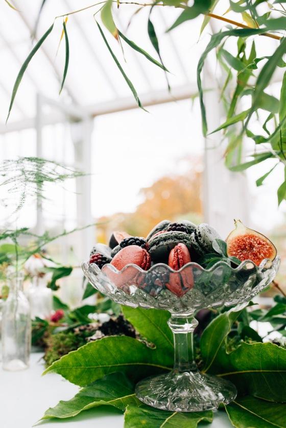Botanical Shoot LMD-1191