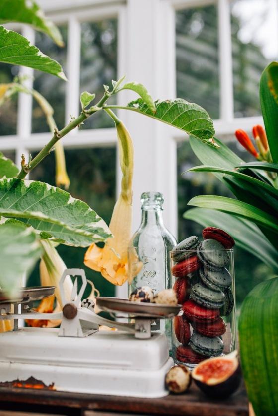 Botanical Shoot LMD-1261